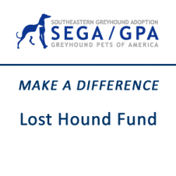 Make a Difference - Lost Hound Fund
