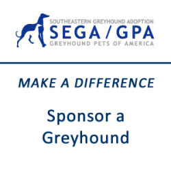 Make a Difference - Sponsor a Greyhound